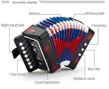 7 Key Accordion Educational Present Musical Instrument