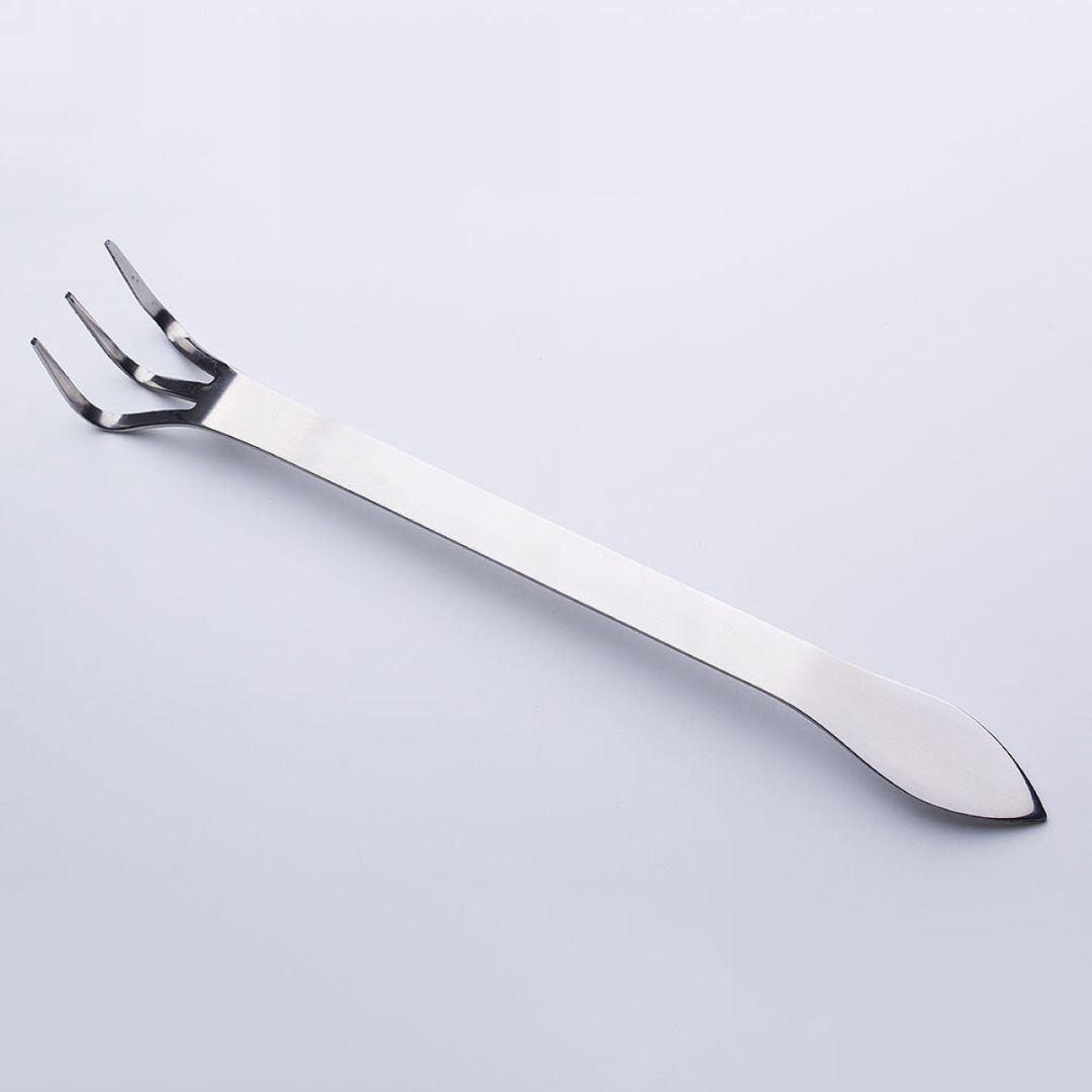 Stainless Steel Root Rake Tool Mix-function With Root Rake and Spatula Bonsai & Gardening Tools